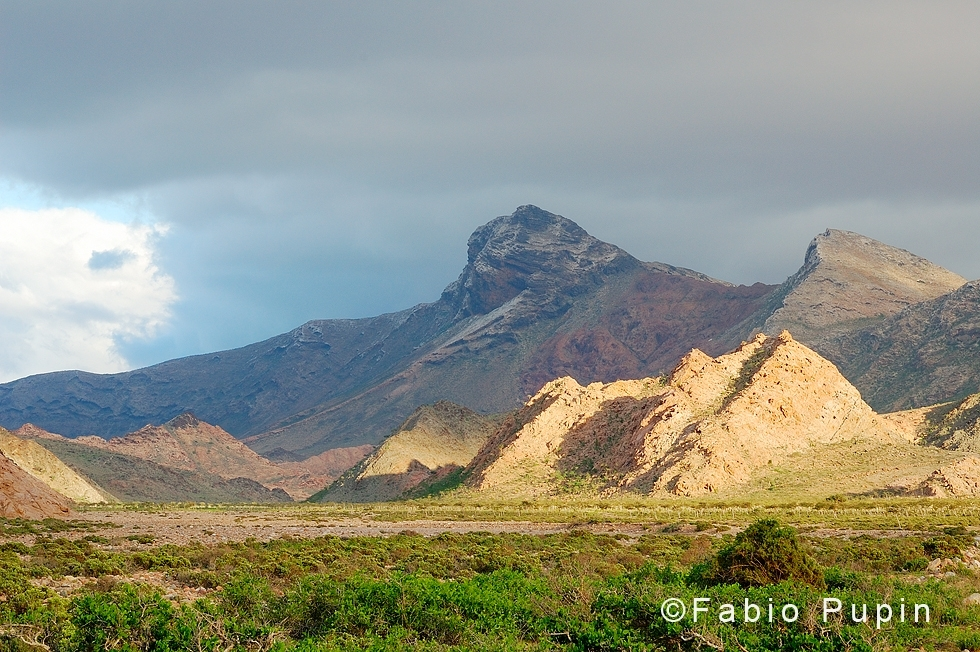 The island of Socotra